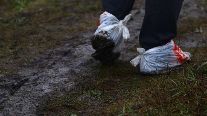 С погодой сегодня не повезло: прохладно и льёт дождь